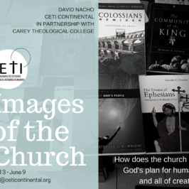 "Upcoming Opportunity! ""Images of the Church"" Online Course"